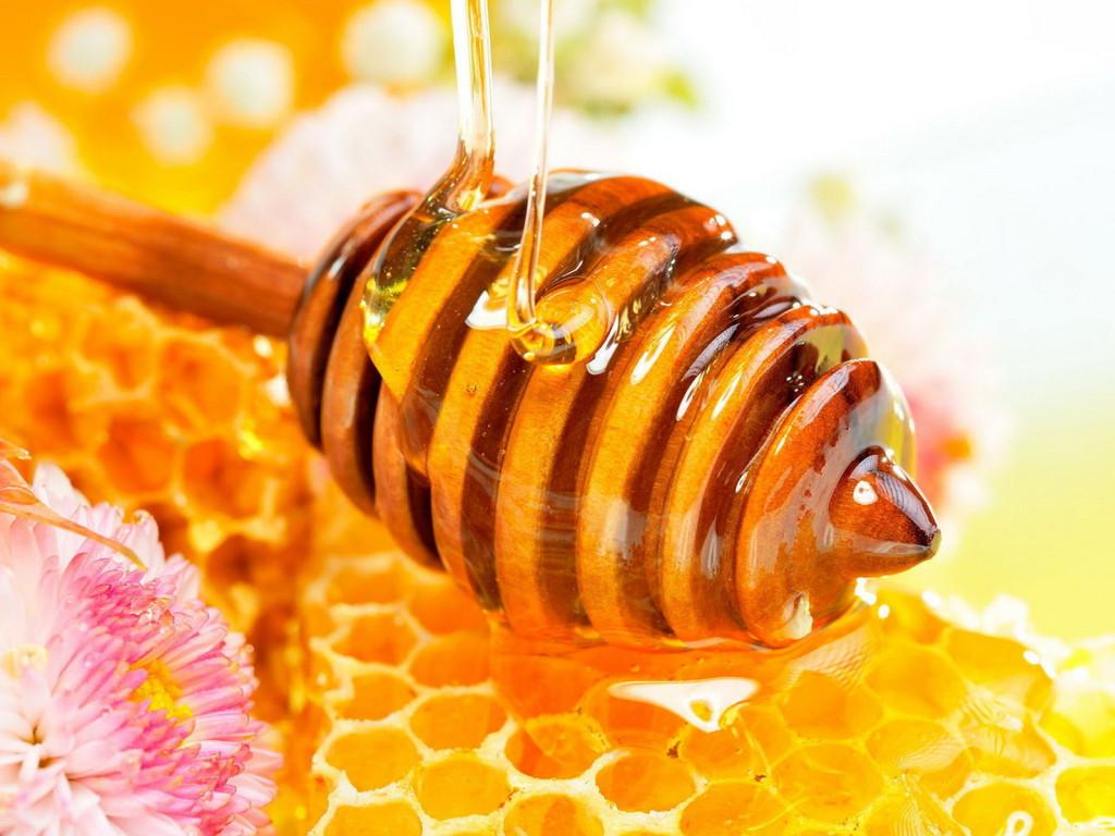 мед и продукты пчеловодства в Украине
